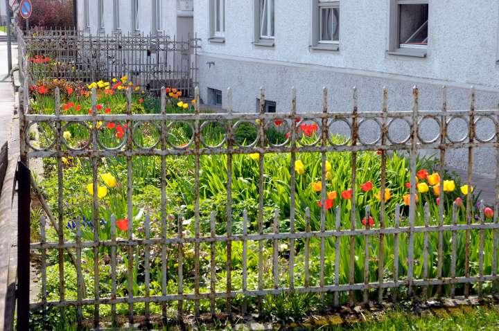 Mühldorf Mößling - Der Frühling zieht ein in der Auerstraße