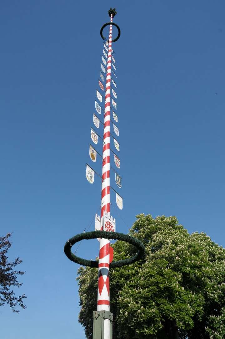 Maibaum in Mühldorf - in den Stadtfarben - rot und weiß