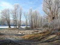 Das feinsandige Innufer - auch im Winter malerisch schön