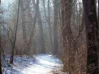 Auch im Winter ist ein Spaziergang entlang des Inntal-Radwanderweges durchaus reizvoll