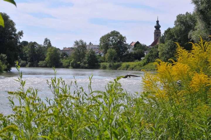 Verläßt man Mühldorf mit dem Fahrrad Richtung Marktl - Simbach - Passau, fährt man den Inn abwärts entlang dem Inntal-Radwanderweg. Ein Blick zurück ist sicher lohnend und lädt zum Wiederkommen ein